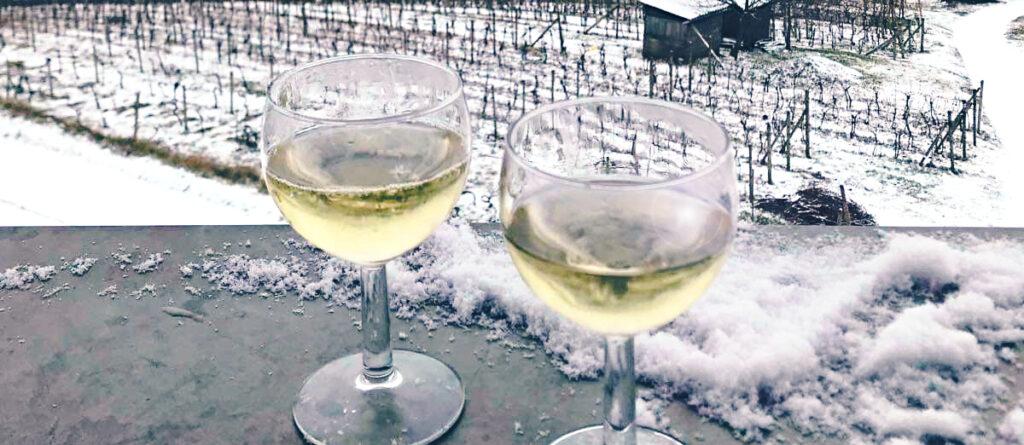 zima a víno